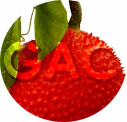 Gac fruit: The flavour of Vietnam with a punch of carotenoids