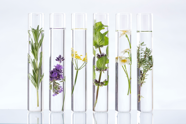 How to make Effective Blends of Essential Oils