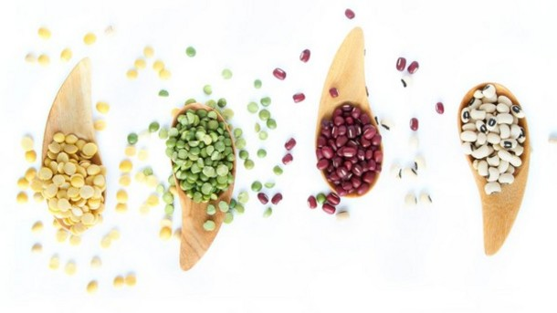 Taste, texture, nutrition: Formulating with plant-based proteins