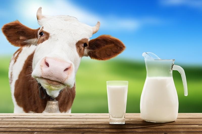 Dairy-free beverage trends