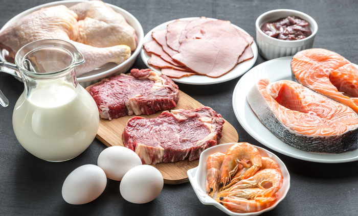 Protein from fungal foods matches animal sources