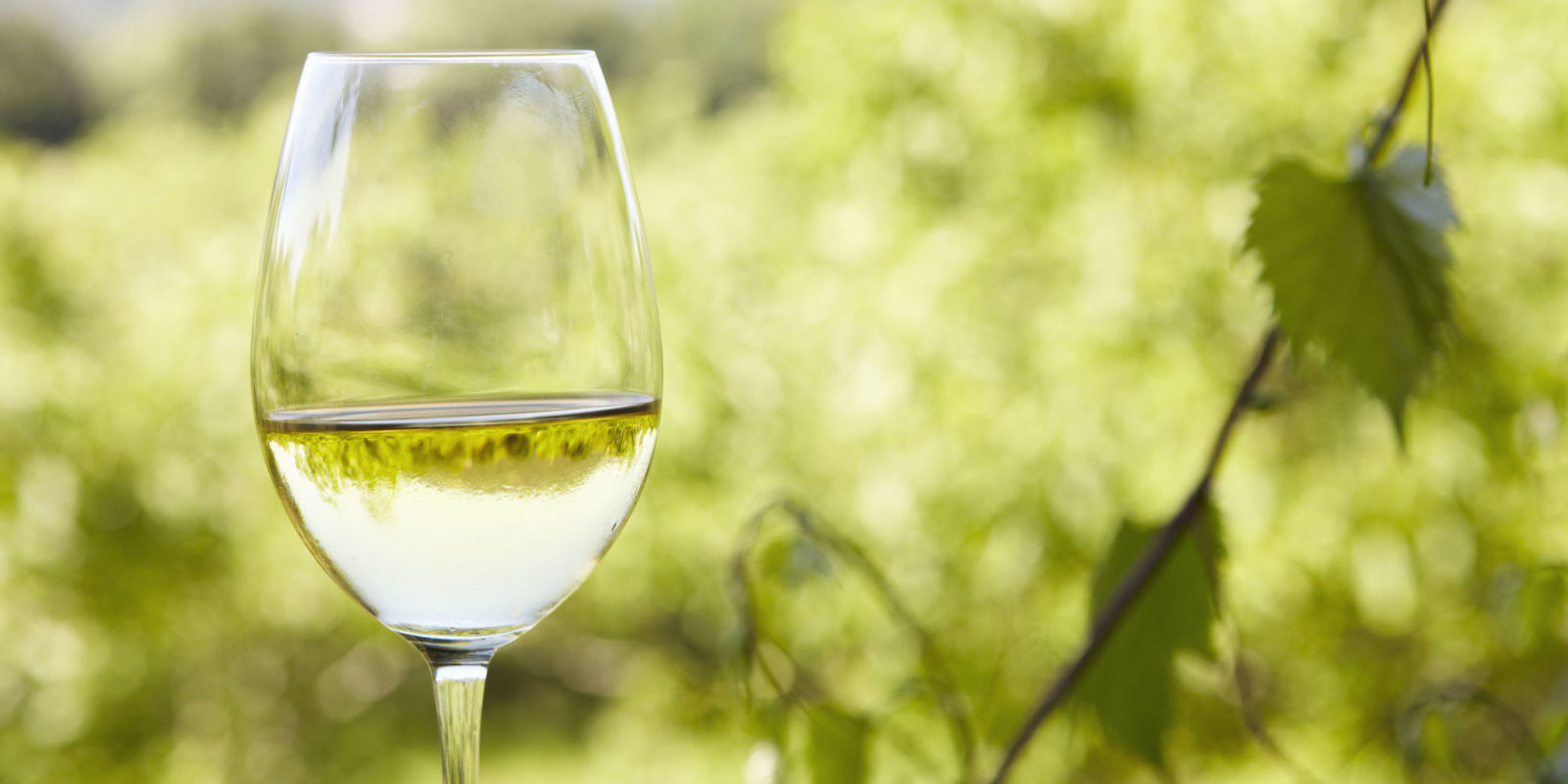 Weight Watchers Is Launching Its Own Wine