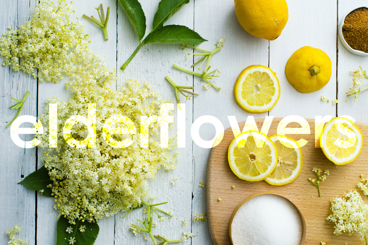 Elderflower-inspired flavour profiles for your applications