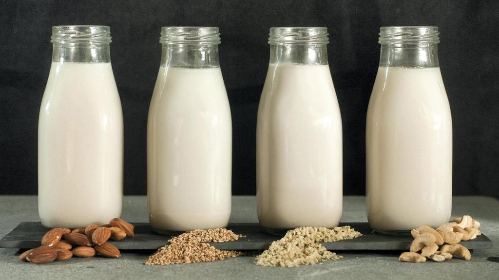 From almond to soy to camel: How did milk get so diverse?