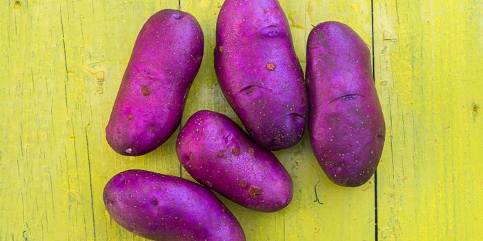 Purple potatoes on yellow wooden board