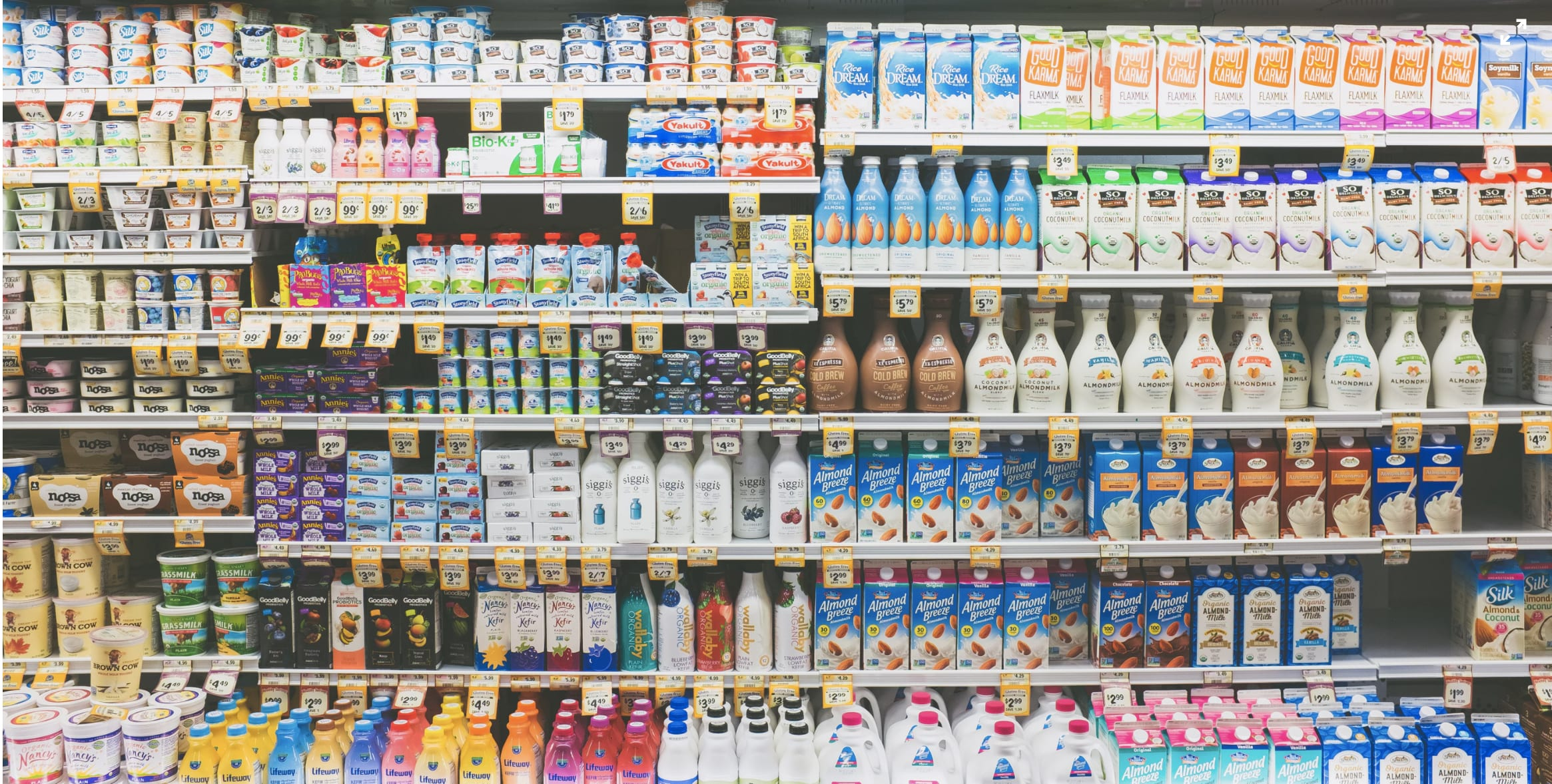 Shelves full of plant-based milk in the supermarket