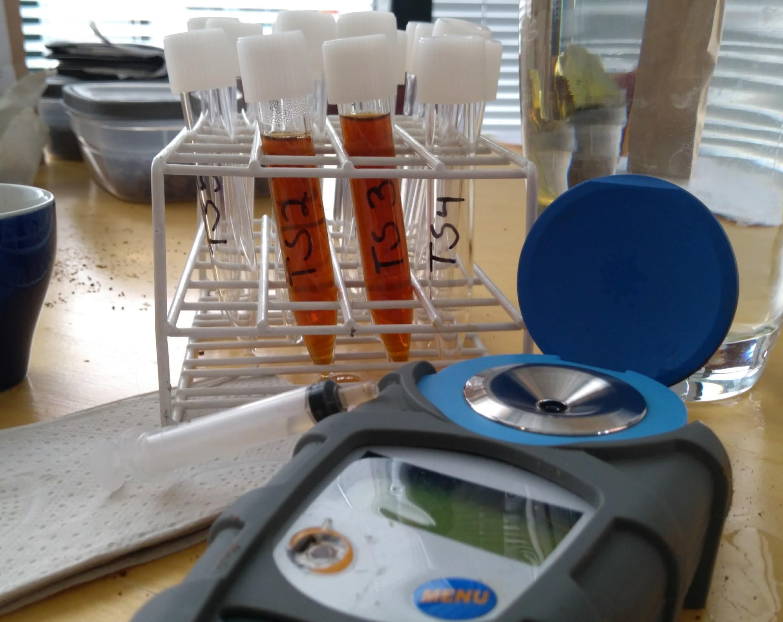brewing samples