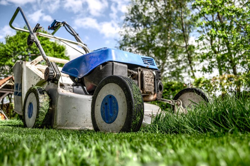 Household chores such as mowing the lawn can be a smell explosion.
