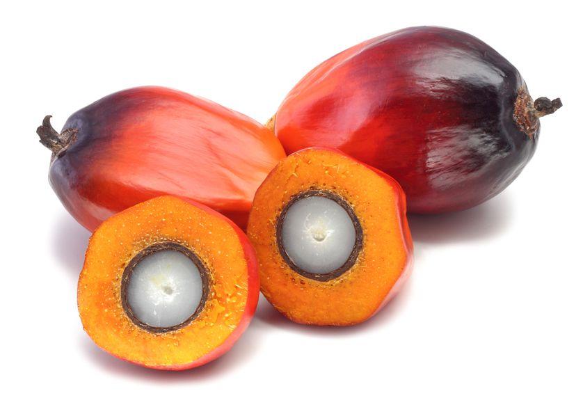 open palm fruit
