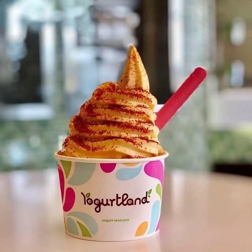 Here's the Complete Guide to Vegan Flavors at Yogurtland