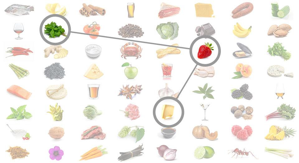 The Science behind Foodpairing