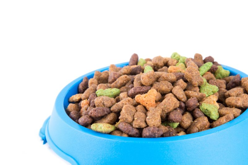 Five trends driving the pet food market | Retail Insight Network