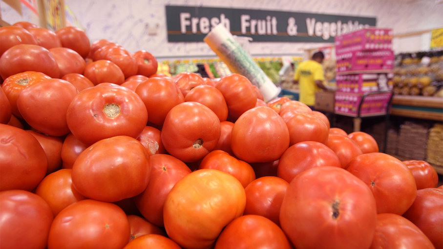 The Quest to Fix the Grocery Store Tomato | How Stuff Works
