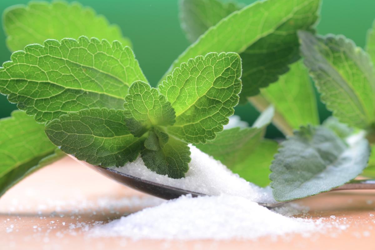Stevia's sweet trajectory   Food Business News