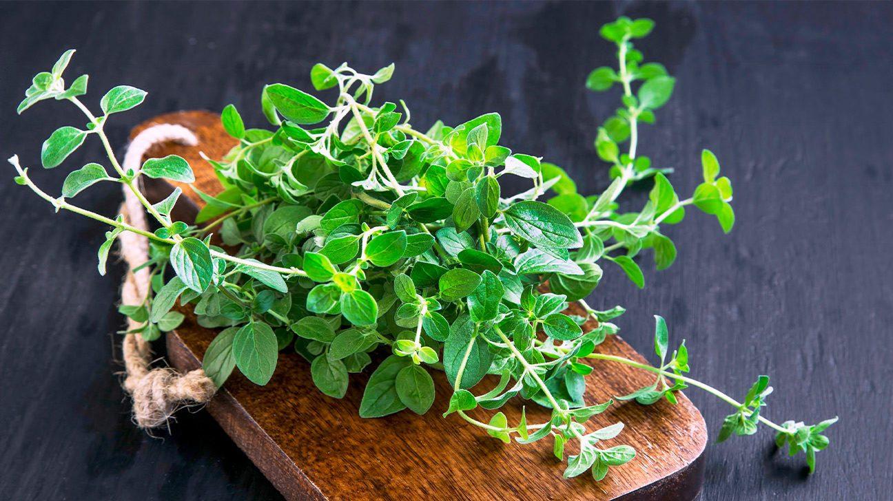 Herbs That Have Antiviral Activity | Healthline