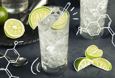 Here's the Science Behind Why Gin and Tonics Taste So Good   Thrillist