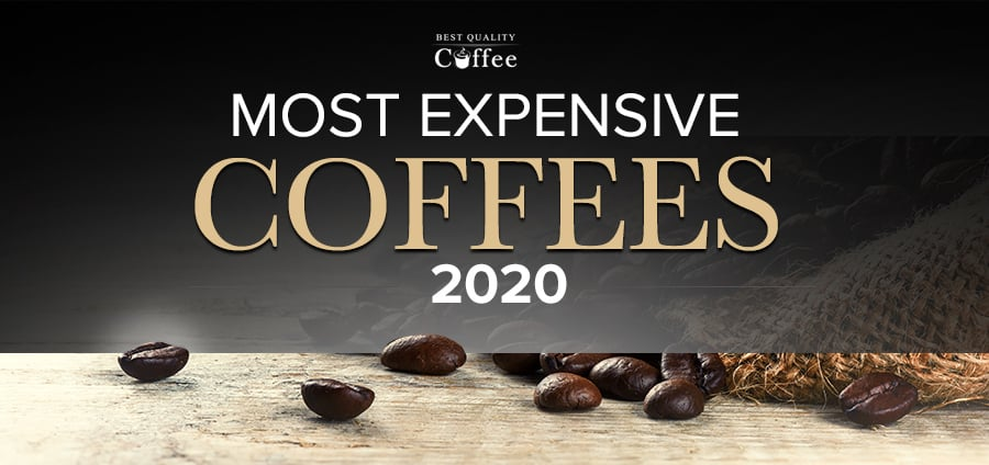 Expensive Coffees and Is It Worth It? | Pop Times UK