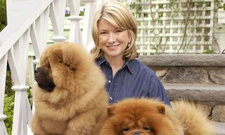 Martha Stewart launches new line of cannabis chews for pets | Inside Ottawa Valley