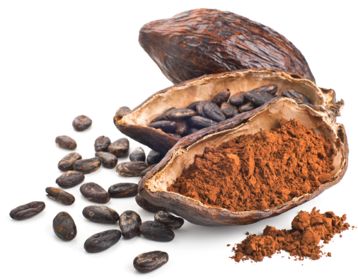 Cocoa pod, beans and powder