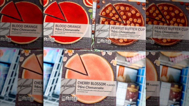 Aldi's Summery New Mini Cheesecake Flavors Have Fans Drooling   Mashed
